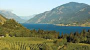 Visit Nine Wineries on Weeklong Small Ship River Cruise in the Pacific Northwest