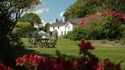 Ynyshir Hall Relaunches as Restaurant with Rooms