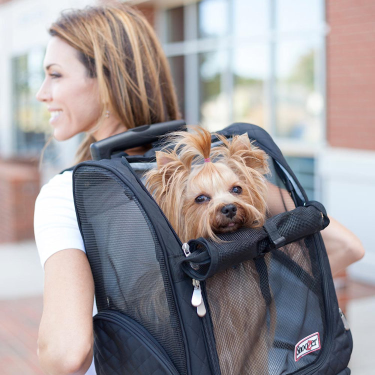 Snoozer pet carrier