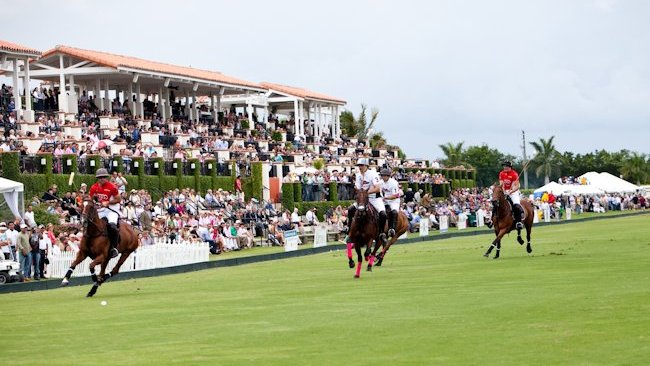 Equestrian Experiences On Palm Beach Florida